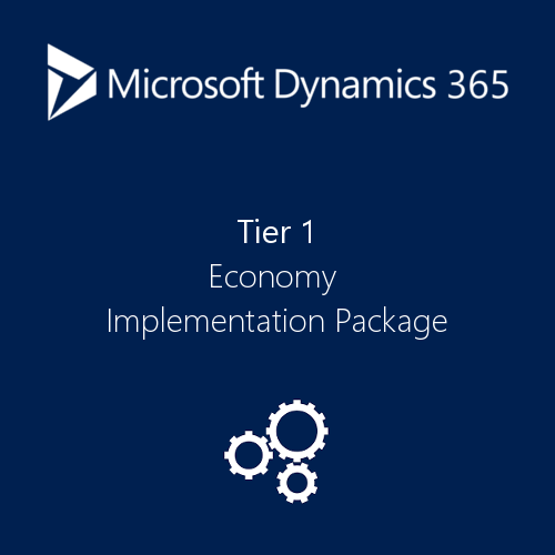 Dynamics 365 Implementation Plan Economy