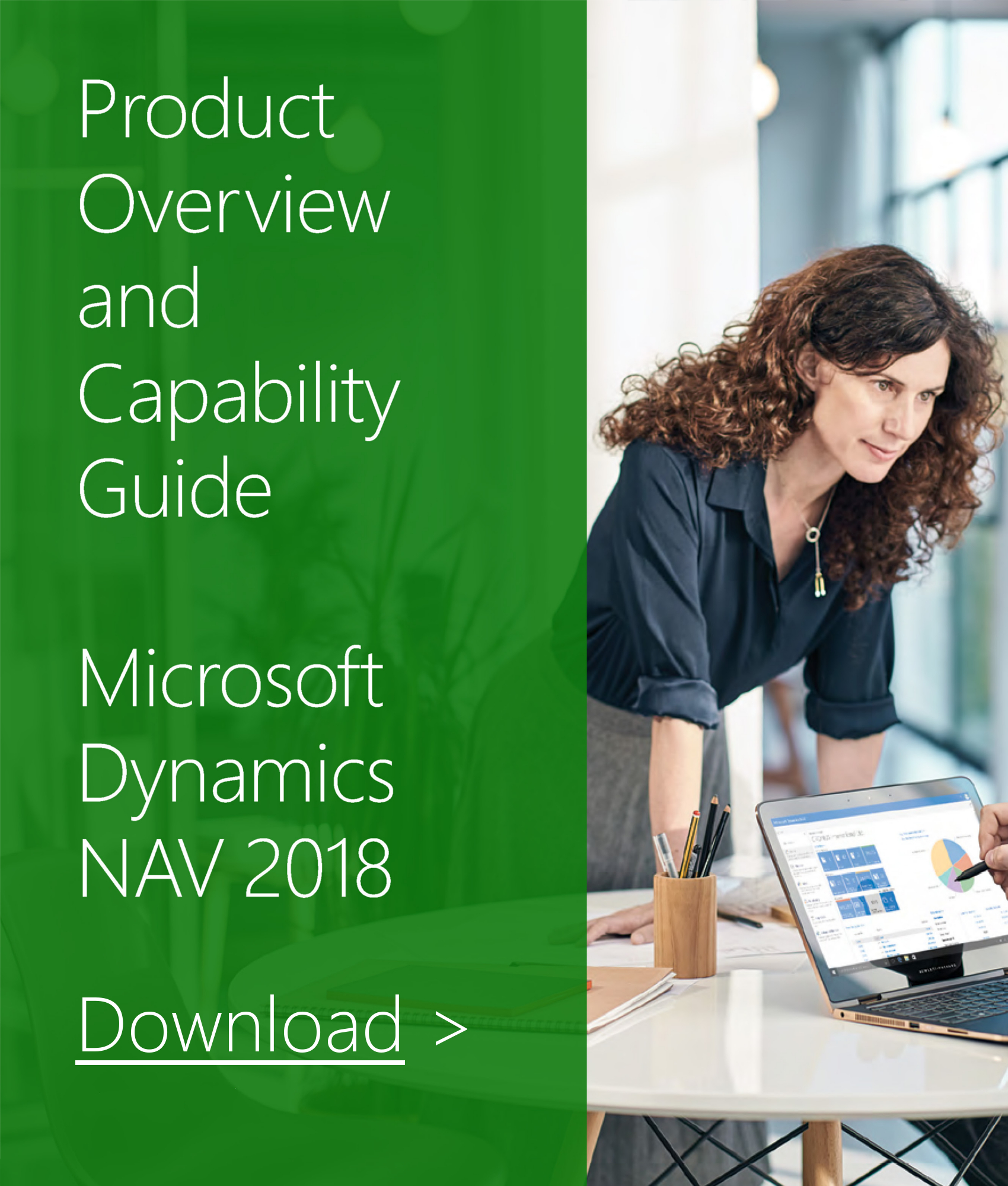 Dynamics NAV 2018 Capability Guide